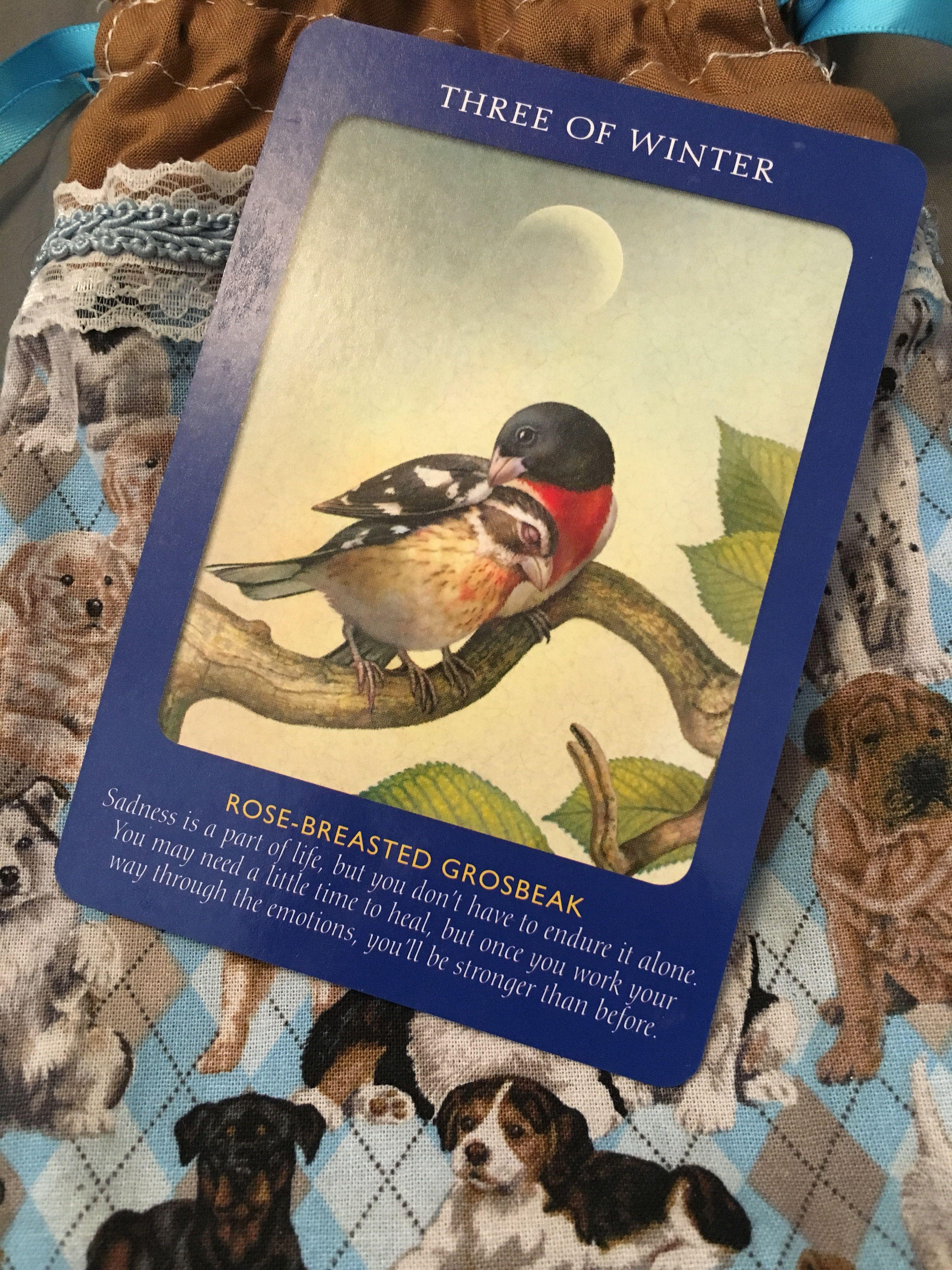 Good morning tarot reading etsy emotional healing