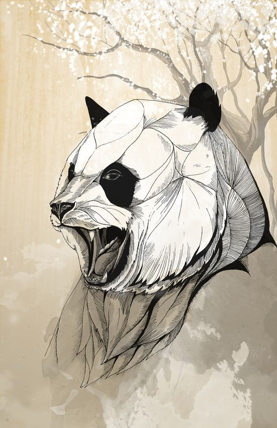 #panda #art #print #tattoo