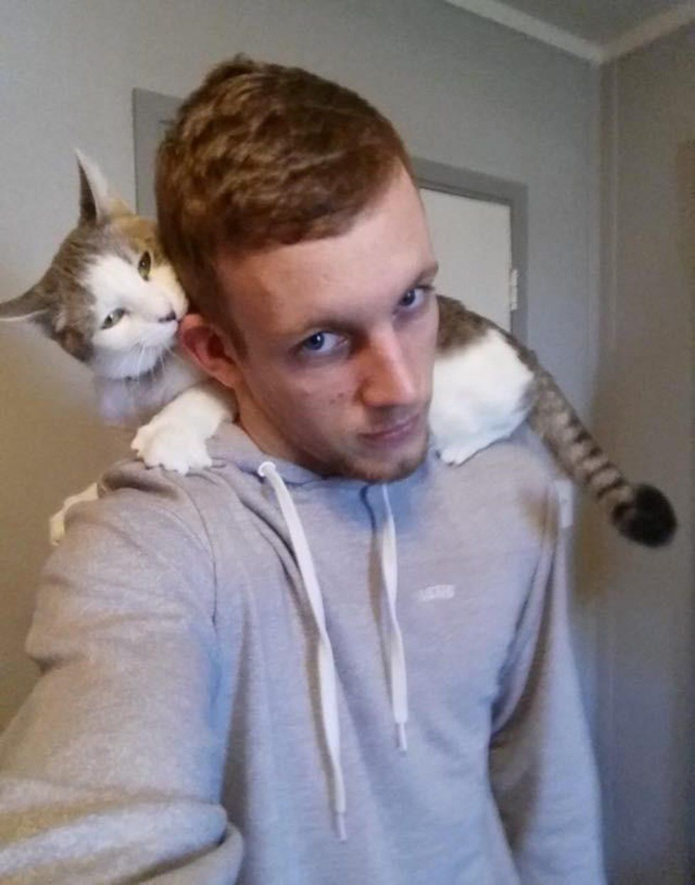 Shelter Cat Climbs On Man S Shoulders Asking Him To Be His Forever Human Cat Shelter Cat Climbing Cats