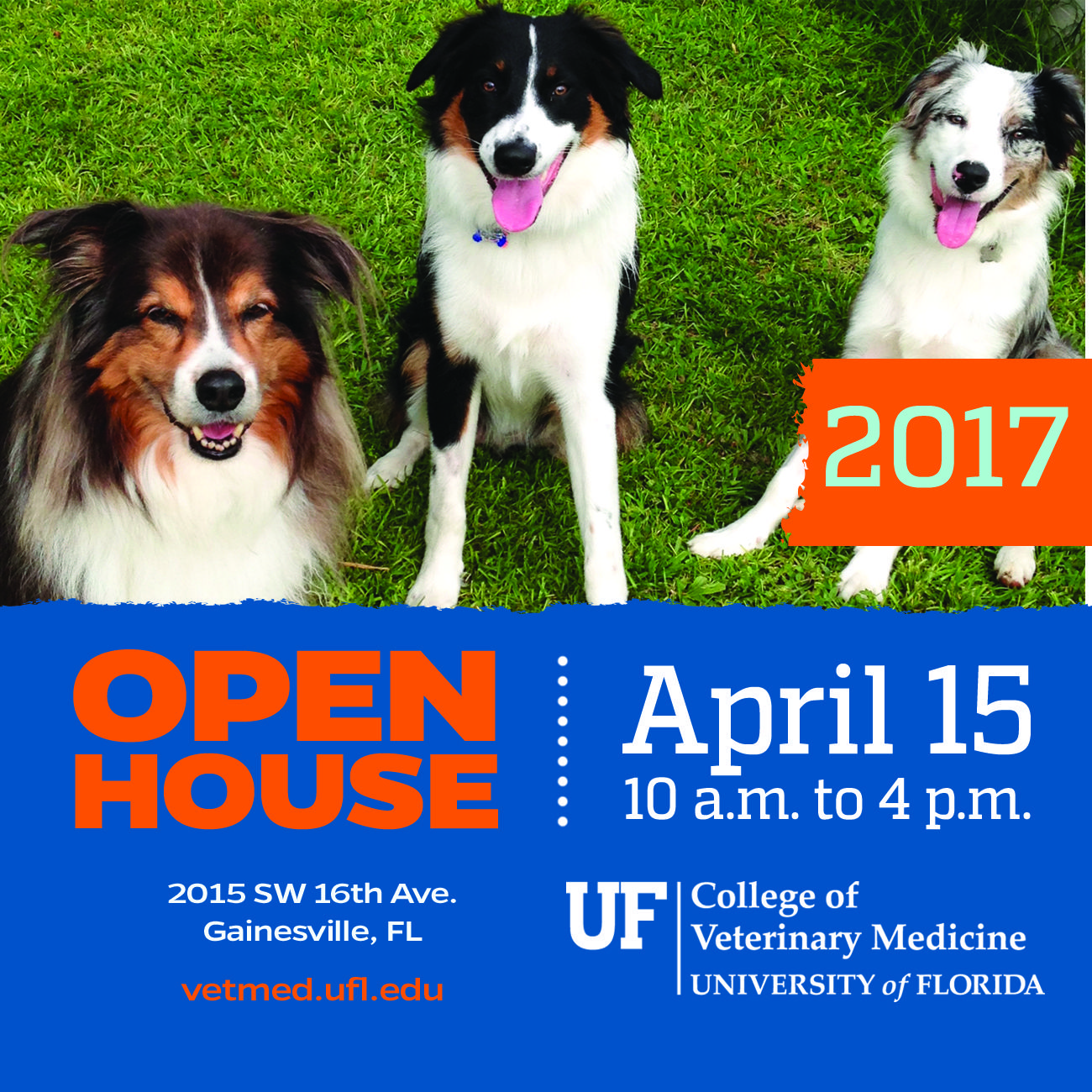 Annual Open House Amp Community Outreach Event College Of
