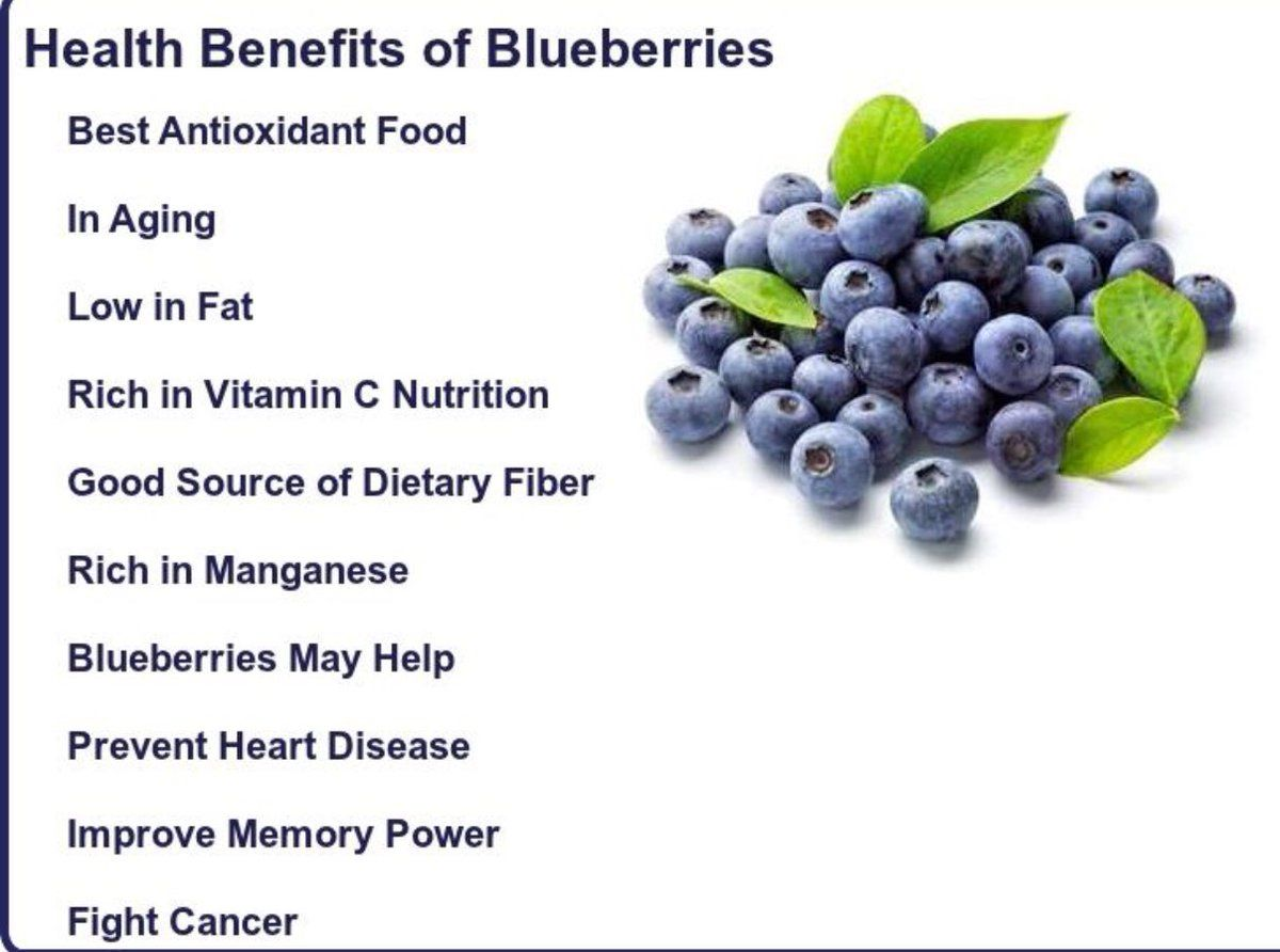 Blueberries: health benefits and harm 48