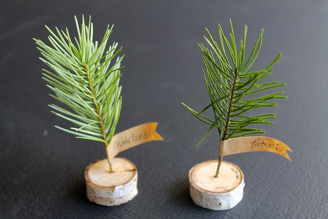 DIY birch branch and mini tree place card by most lovely things, via Flickr