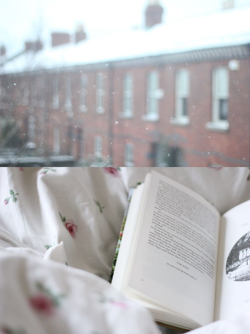 earworm and plum pudding: spring flakes #snow #books
