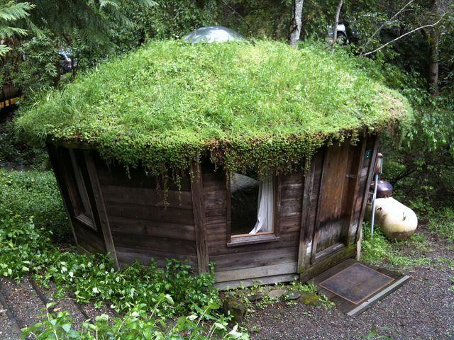 green rooftop yurt by fusilli, via Flickr