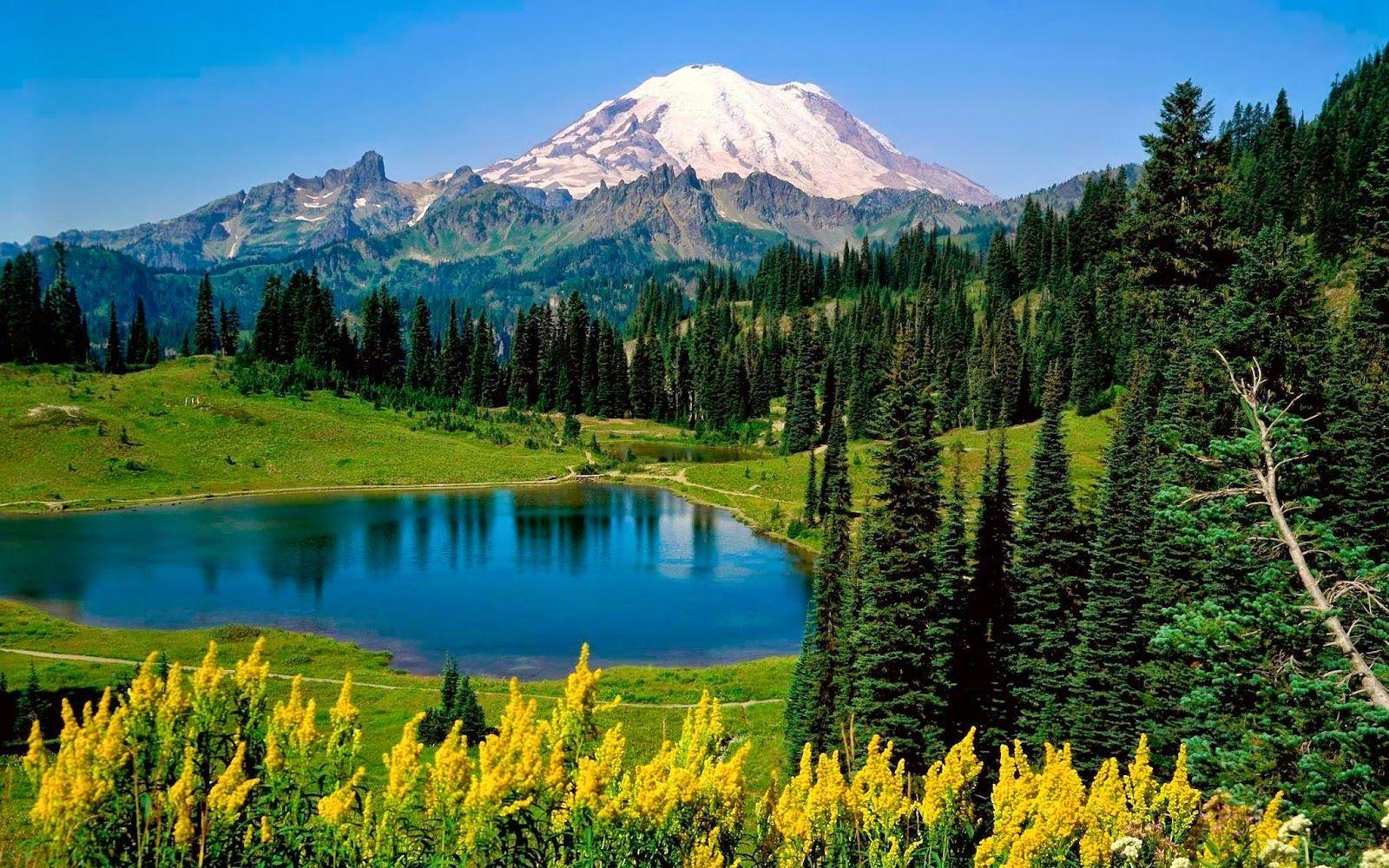 Top Wallpaper Mountain Windows 7 - a9c8fb698d8c6e6f75cd661b1eea6b34  Snapshot_486535.jpg
