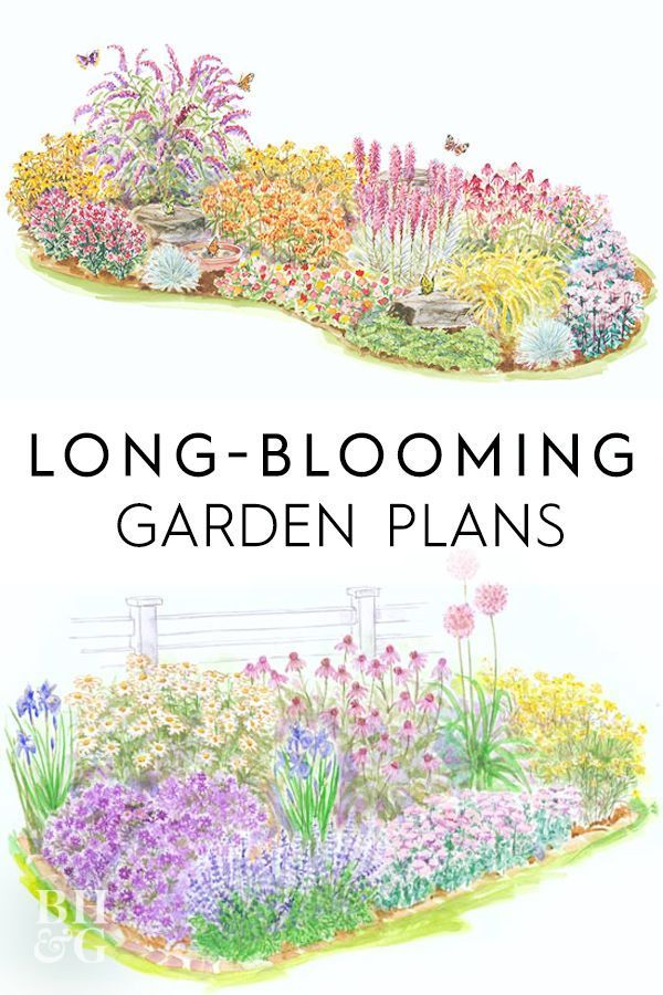 Photo of Long-Blooming Garden Plans | mek