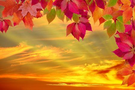Autumn Sunset Desktop Nexus Wallpapers Fall Wallpaper Free Fall Wallpaper Fall Background Wallpaper