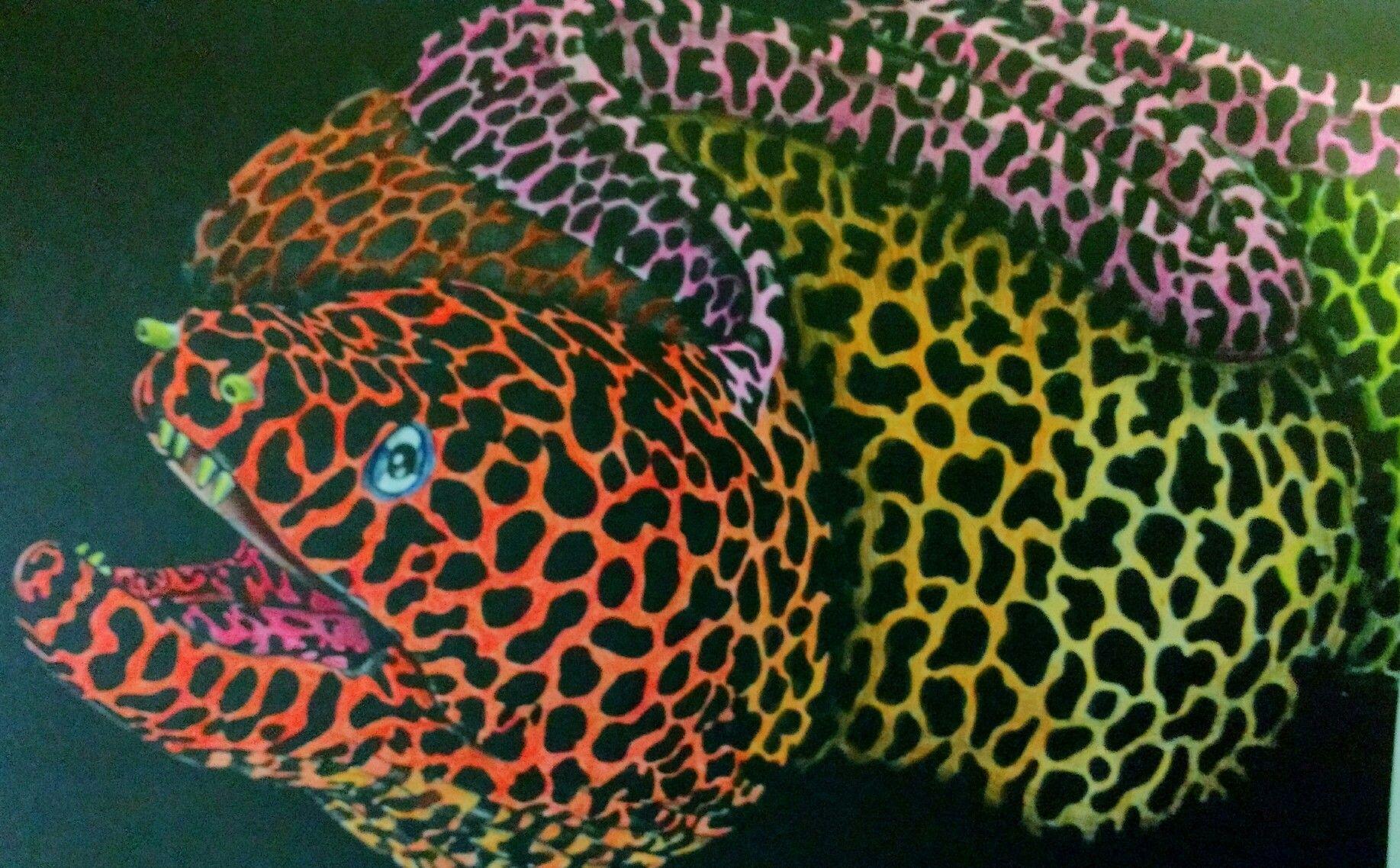 Eel By Tim Jeffs Colored Susan