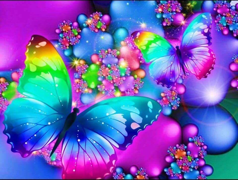 Butterflies   Butterfly pictures, Butterfly wallpaper ...