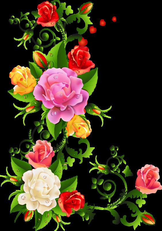Fiori Png.0 Aba23 5bf53abd Xl Png 563 800 Cornice Di Fiori Arte Del