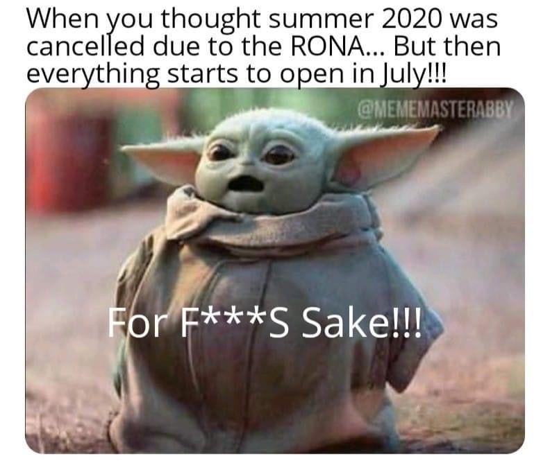 Pin By Laurel Shomberg On Baby Yoda Funny Cartoons Funny Memes Disney Memes