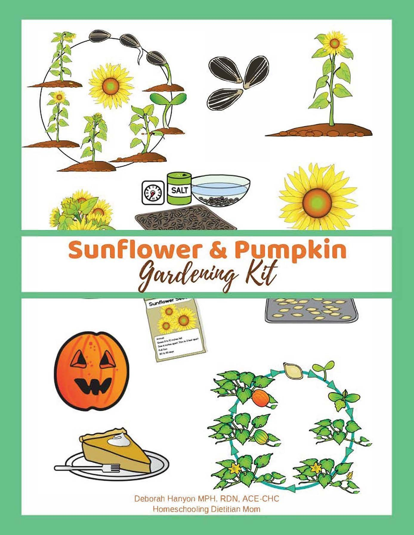 Sunflower And Pumpkin Gardening Kit
