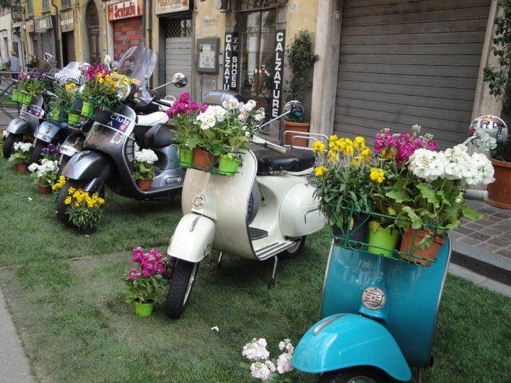 Gli Vespi, Italy