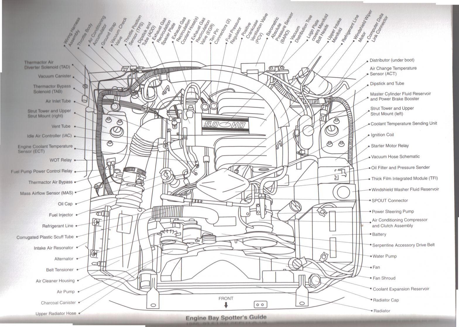 Custom Autosound Wiring Diagram Mustang Diagram Engineering