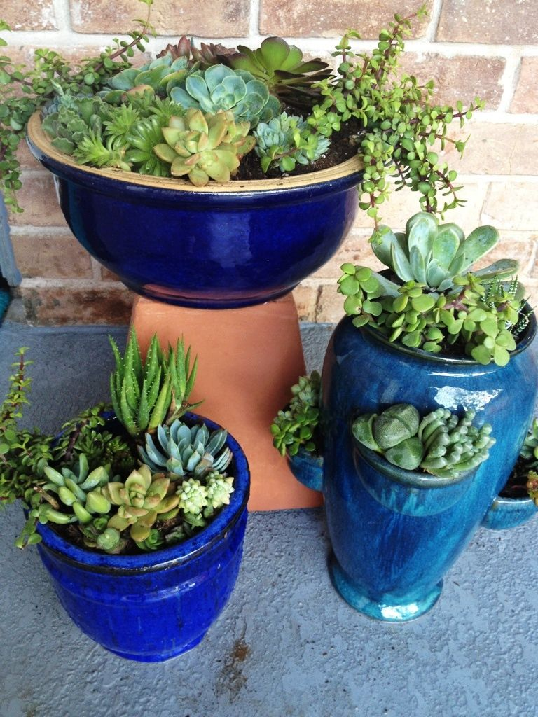 Looking for one found 3 blue pots