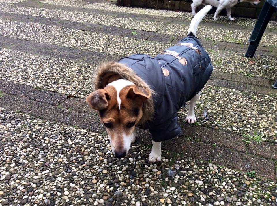 Een nieuwe jas of ik daar nou blij mee ben?!