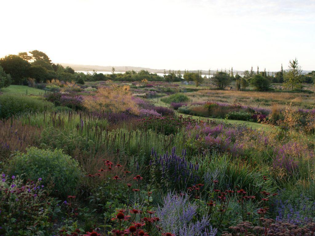 Piet Oudolf Private Garden Location Thews West Cork Ireland Landscape Design Private Garden Design Dream Garden