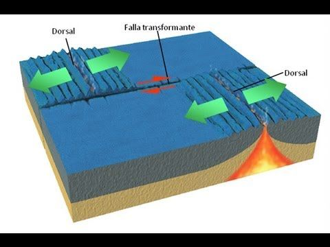 Tectónica de placas: dinámica de la Tierra.
