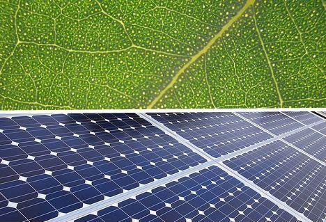 Incredibly Leaf Like 12 Bio Inspired Plant Based Designs Webecoist Solar Solar Panels Design