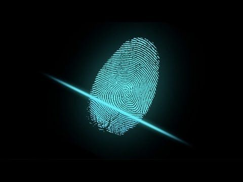 Image result for israels fingerprints images