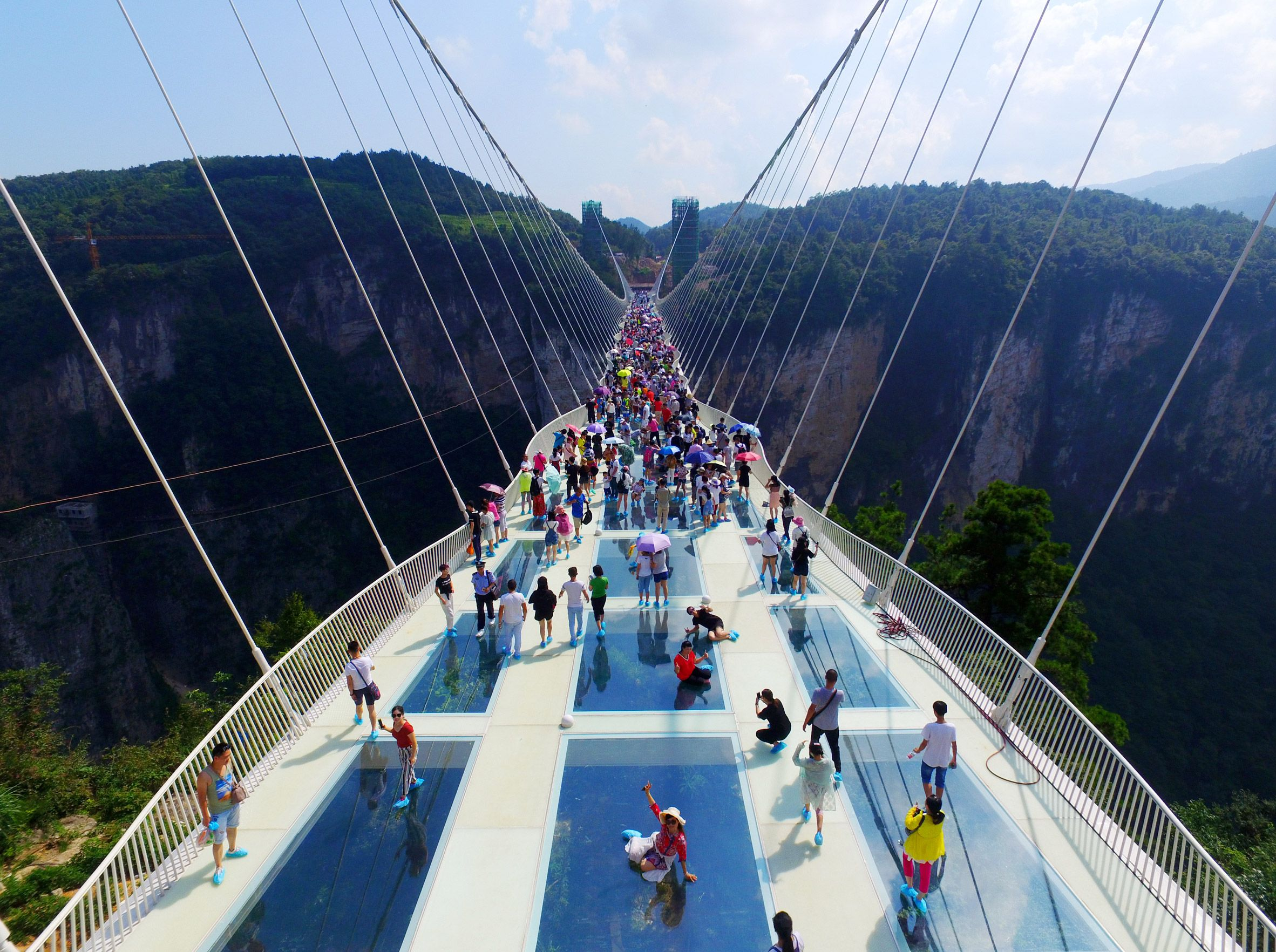 World S Tallest And Longest Glass Bridge Opens In China Glass Bridge China Glass Bridge Zhangjiajie