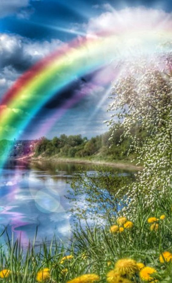 Pin On Natural Rainbow