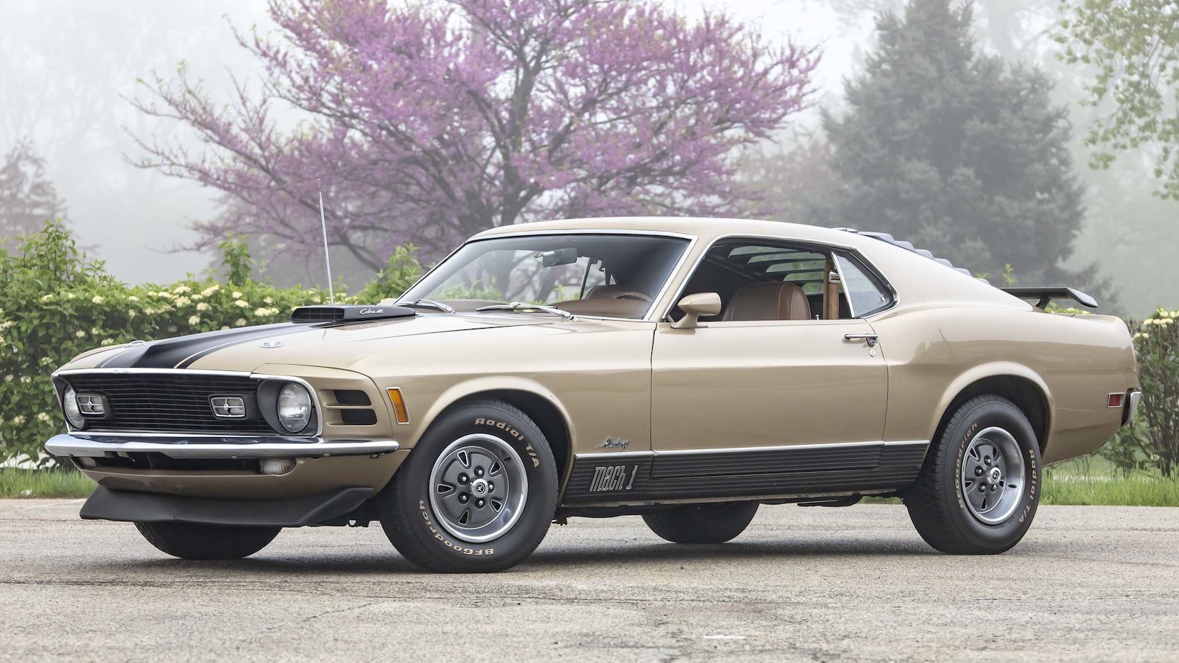 1970 Ford Mustang Mach 1 Fastback Presented As Lot T264 At Indianapolis In 1970 Ford Mustang Mustang Mach 1 Mustang