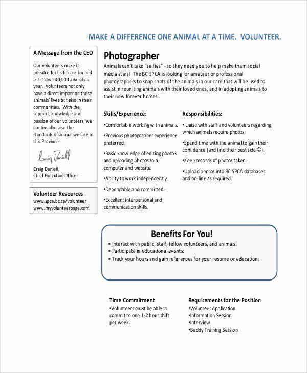 Pin On Jobs Description In Resume
