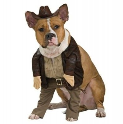 Indiana Jones Pet Costume  2dbc8919f23