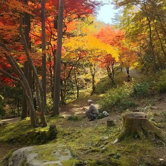 彌彦神社 (Yahiko Shrine)は弥彦村、新潟県にあります