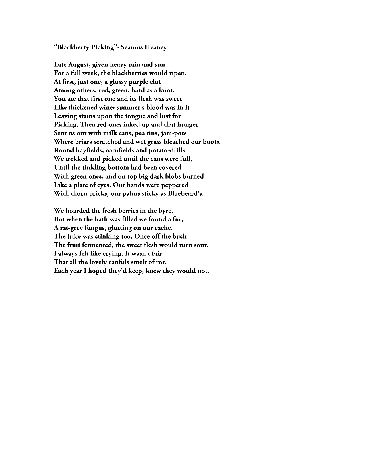 blackberry picking by seamus heaney distilled and powerful  blackberry picking by seamus heaney