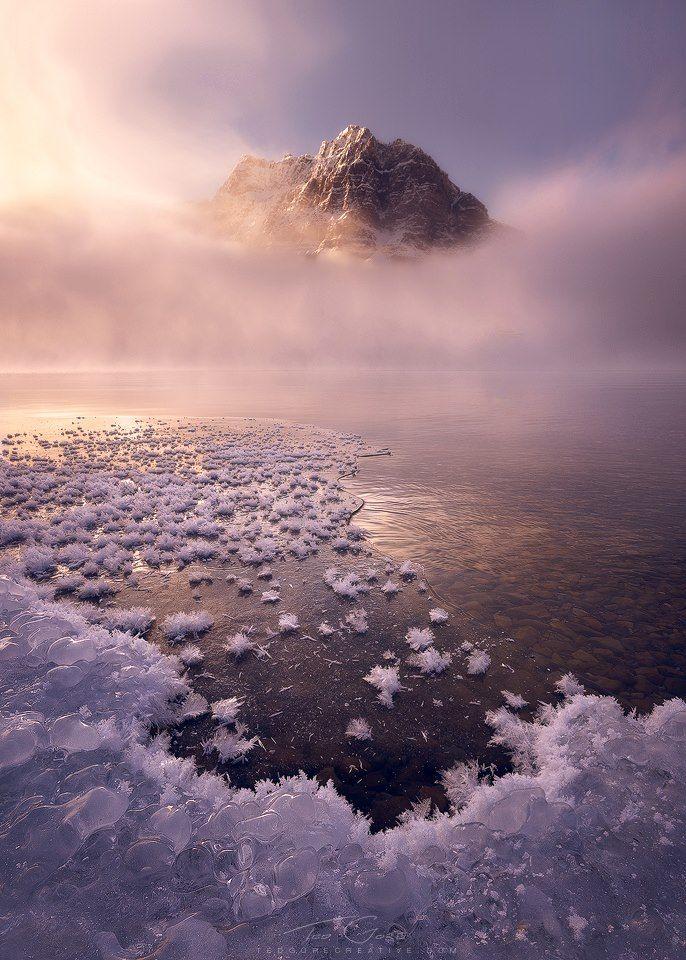 ice & fog