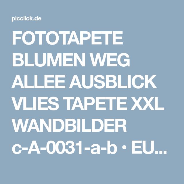 Fototapete Blumen Weg Allee Ausblick Vlies Tapete xxl Wandbilder c-A-0031-a-b