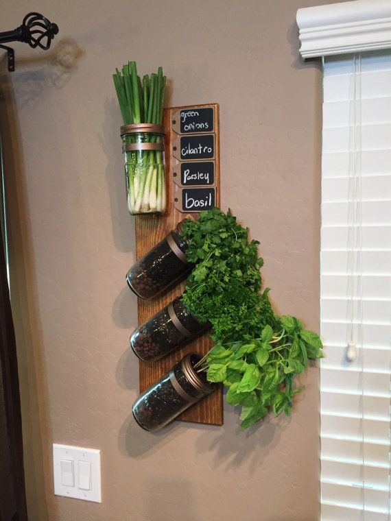 Vertical Garden Indoor Herb Succulent Planter Mason Jar Wall Decor Sconce