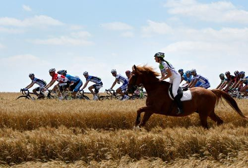 Bike Vs Horse Race Horses Bicycle Race Tour De France