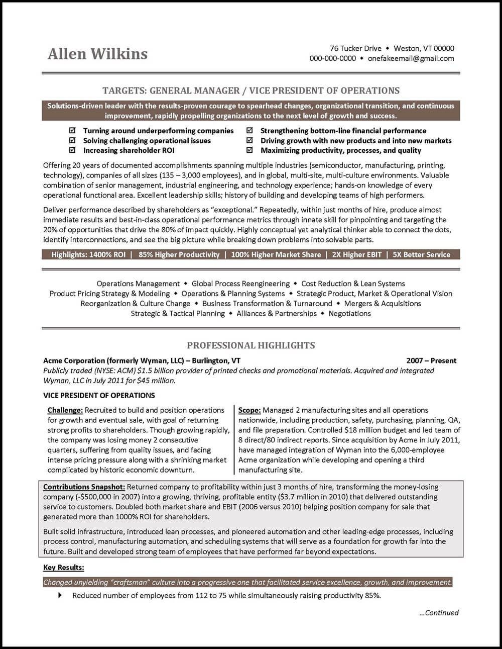 example vice president resume page 1