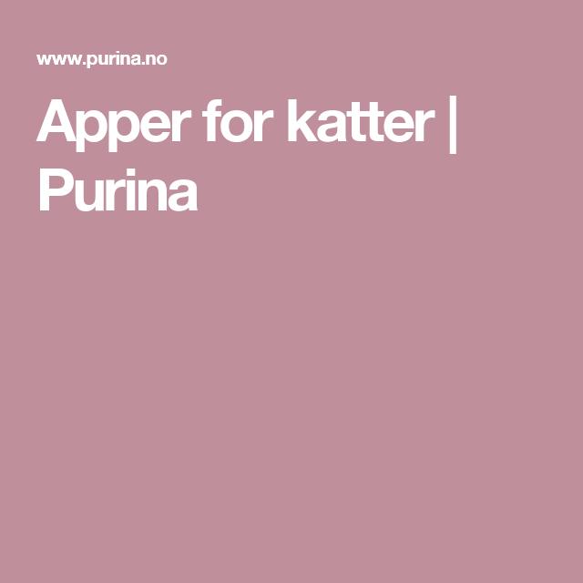 Apper for katter | Purina