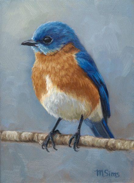 eastern bluebird bird painting open edition by mollysimsfineart