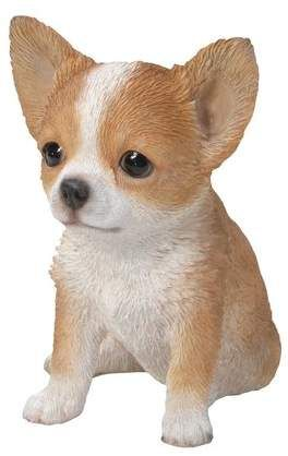 Brown And White Chihuahua Puppy Statue Chihuahua Puppies White