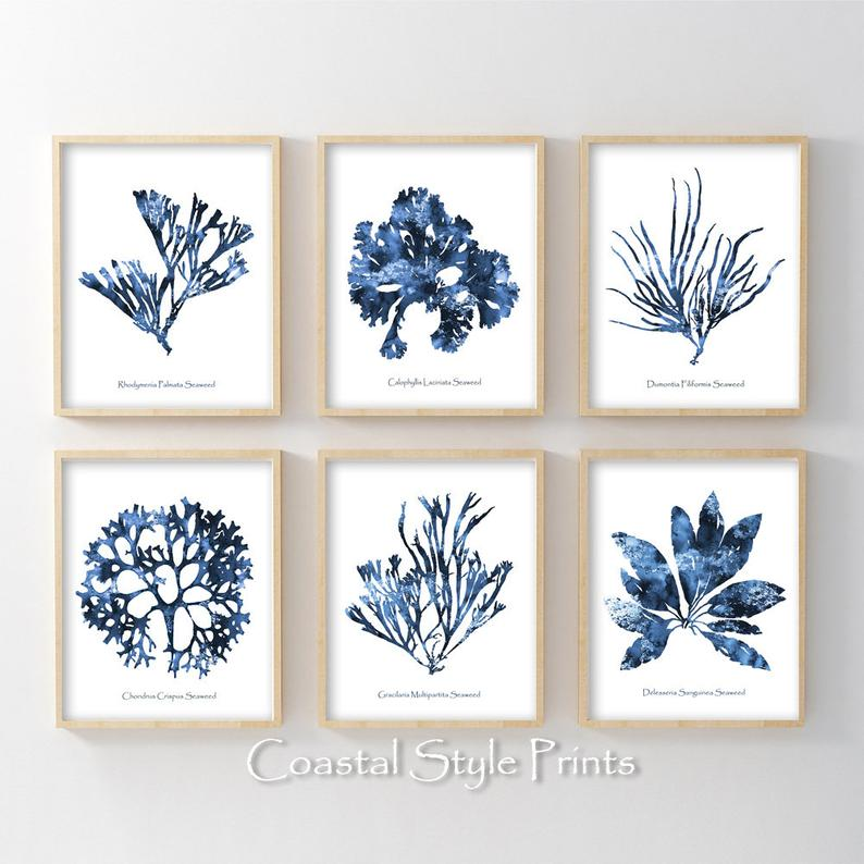 Hamptons Wall Art Set Of 6 Prints Coral Print Set Coastal Etsy Coral Wall Art Coastal Wall Art Etsy Wall Art