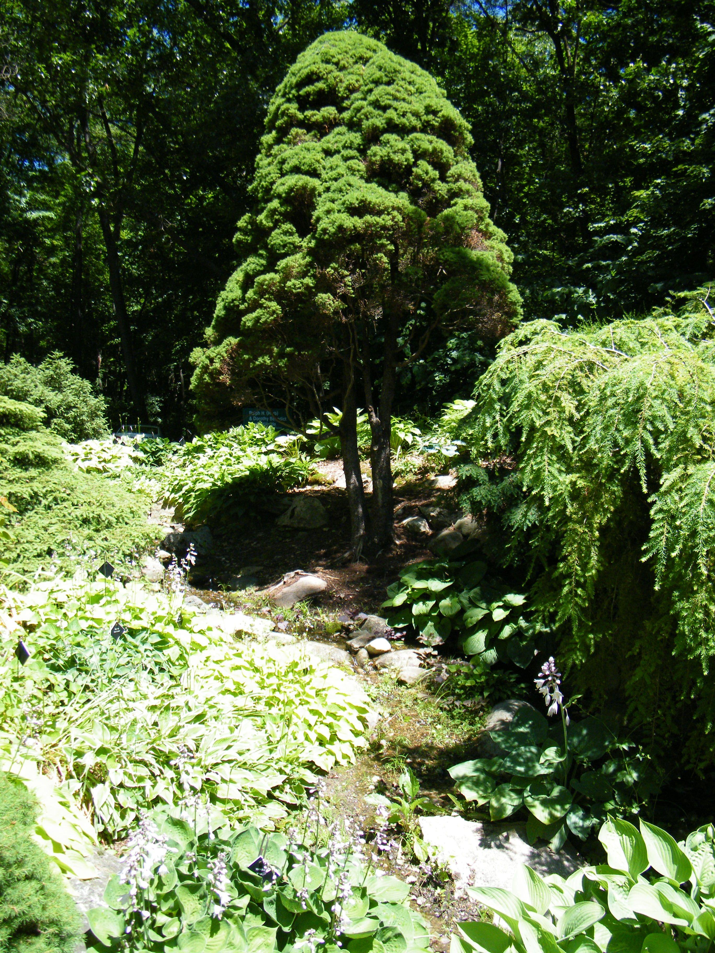 a9d5bda61922c7405b4013054166b168 - Hidden Lake Gardens In Tipton Michigan