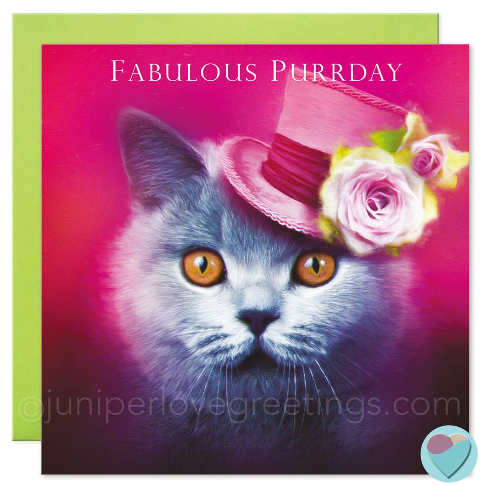 Birthday Cards Cat British Shorthair Lover Sister Mum Wife