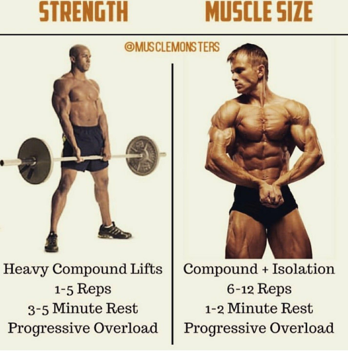 Pin By Earthen Temple On Movement Workout Routine For Men Fast Muscle Growth Workout Program Gym