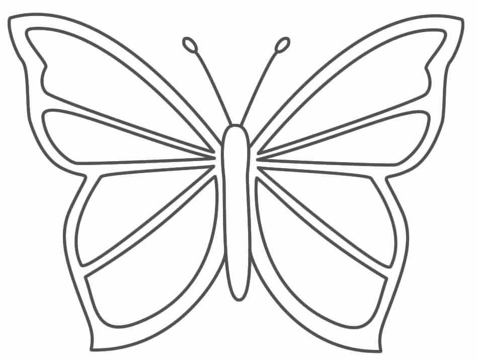 Bildergebnis Fur Schmetterling Ausmalbilder Zum Ausdrucken Schmetterling Ausmalen Ausmalen