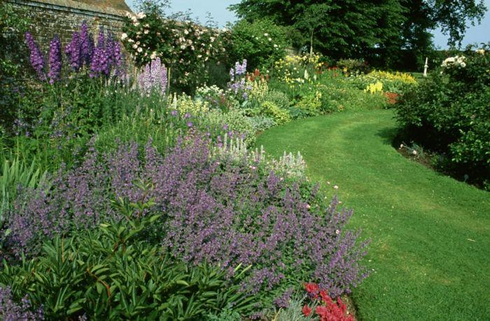 Charming Lavendel Garten Ein Rasen Als Pfad Viele Blumen Einen Garten Pflegeleicht  Gestalten Design