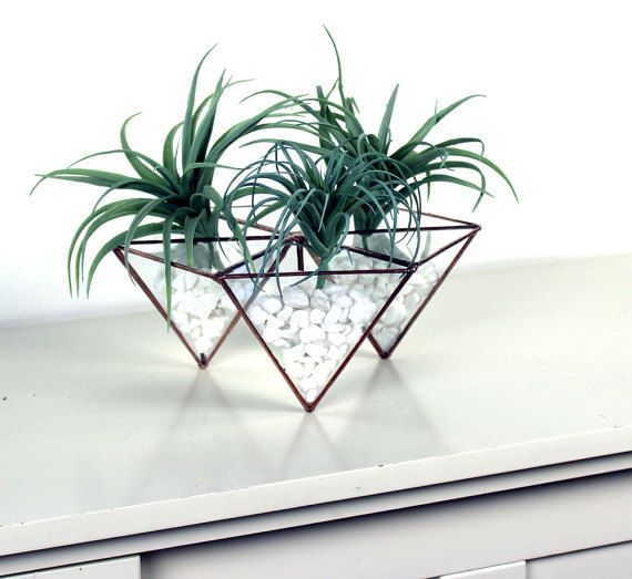 Trendy Modern Geometric Hexagon Glass Terrarium Stained Glass Decor