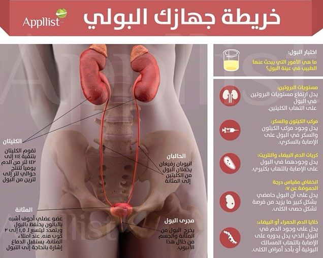 Know Your Urine Fun Facts Agoi Facts