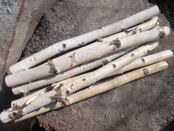 10 Wood Stick Birch Sticks Decor By