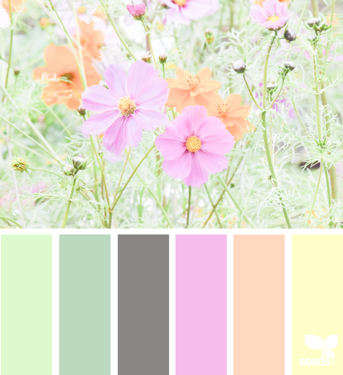 Color Flora | Flora, Design seeds and Color inspiration