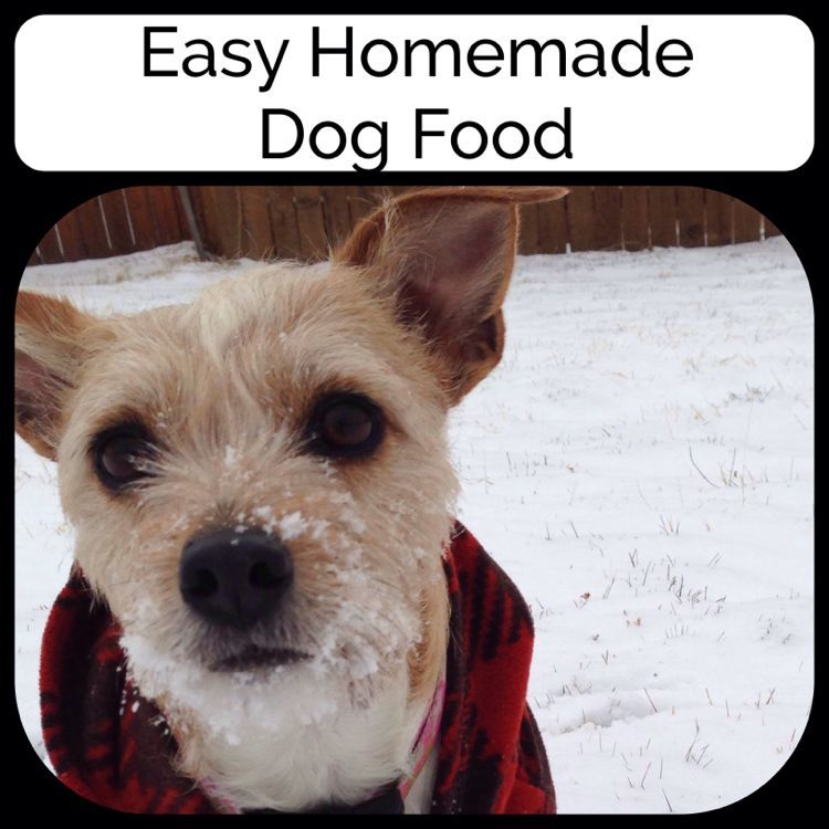 Here Is An Easy Recipe For Dog Food. They LOVE It